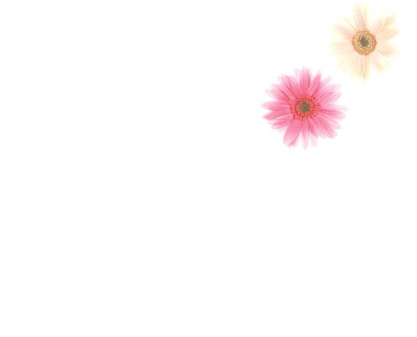 オークション代行 カーミリオン フラワーアレンジメント フラワーデザイン アレンジメント ブーケ コサージュ アートフラワー 埼玉県 川口市  「ミリオン教室」